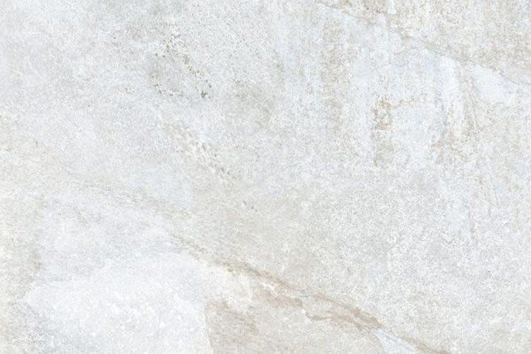 foundation-01-sample
